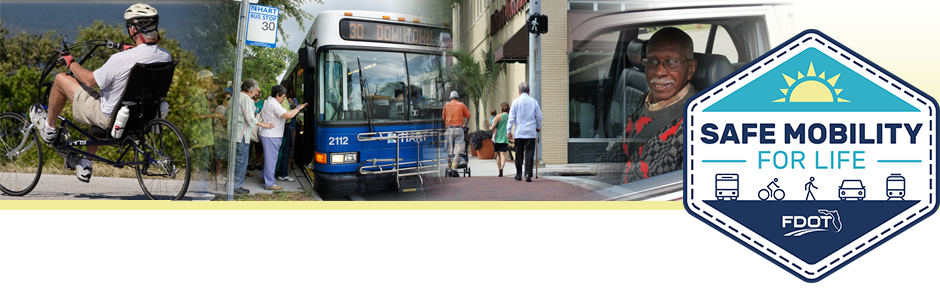 Safe Mobility for Life header image
